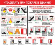 Что нужно делать при пожаре в здании