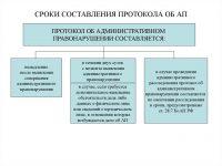 В течение какого времени составляется административный протокол